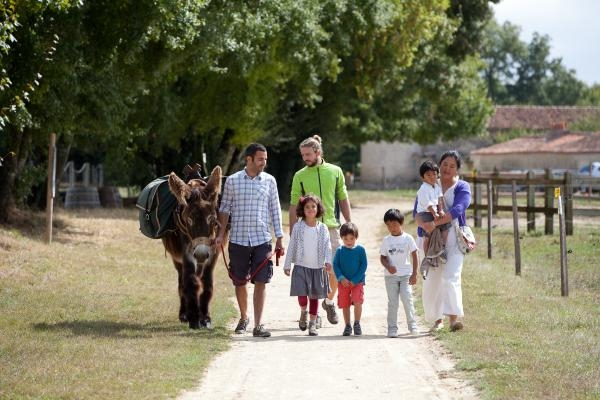 randonnée âne bâté avec une famille
