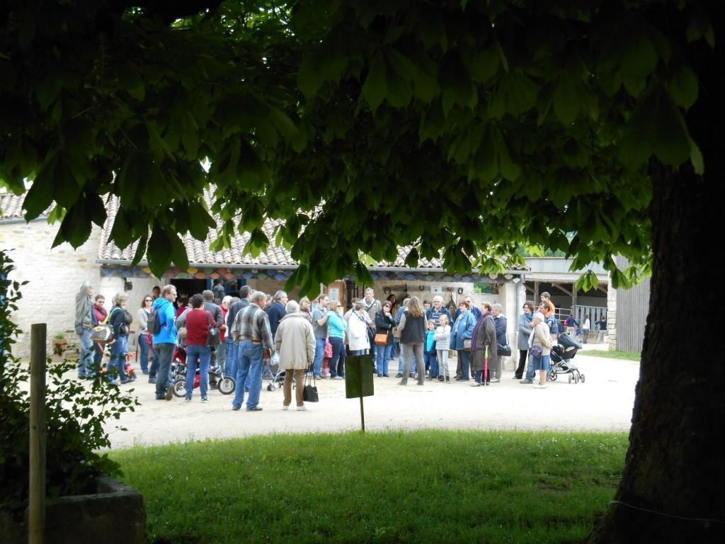 visite guidée à l'Asinerie du Baudet du Poitou