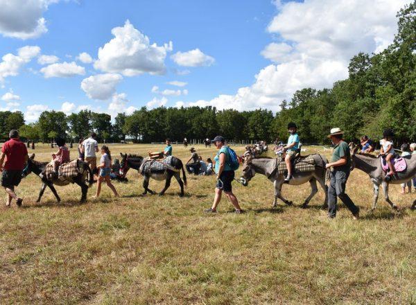 balade à dos d'âne © Asinerie du Baudet du Poitou